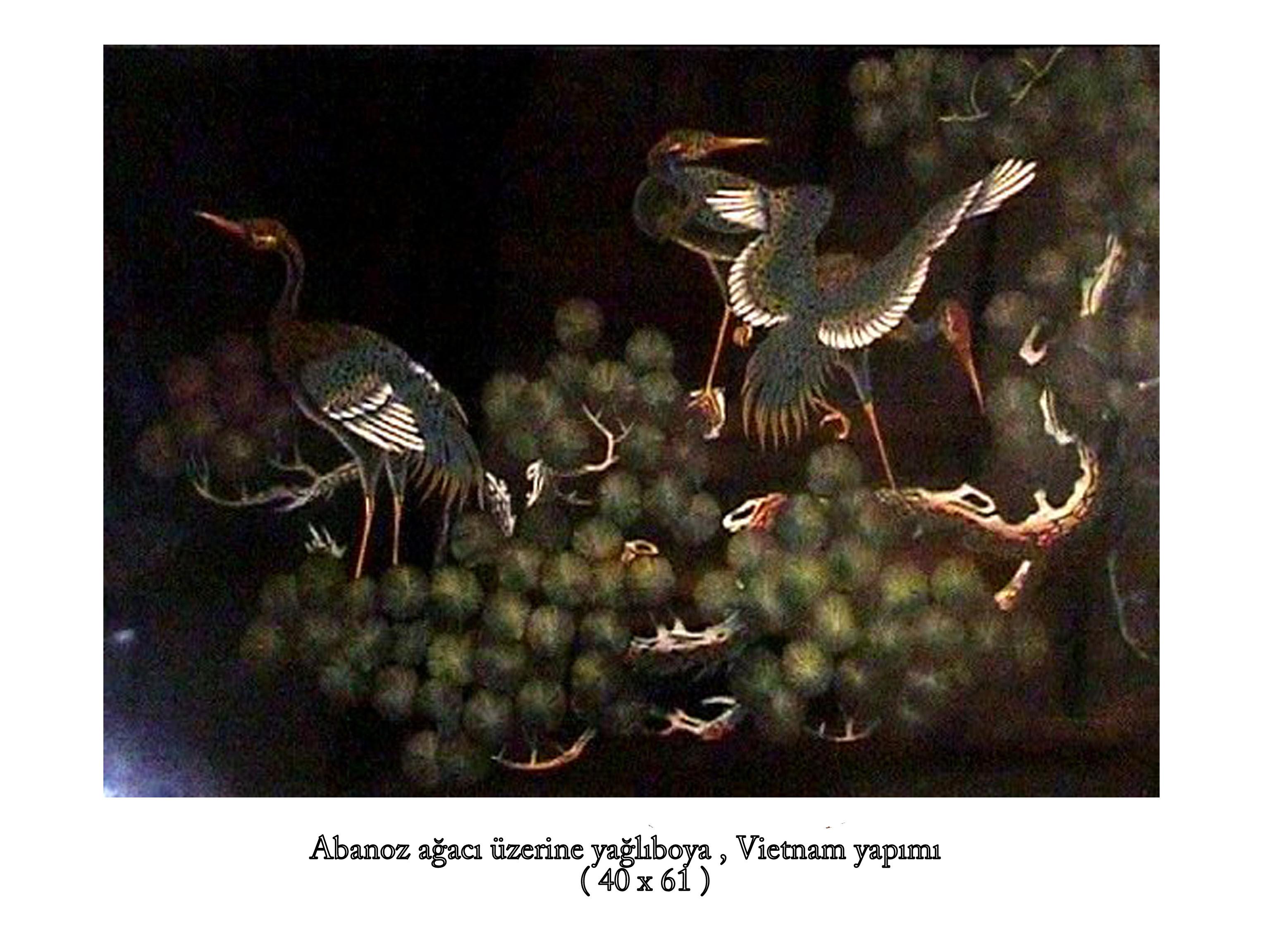 abanoz-agaci-tablo_0